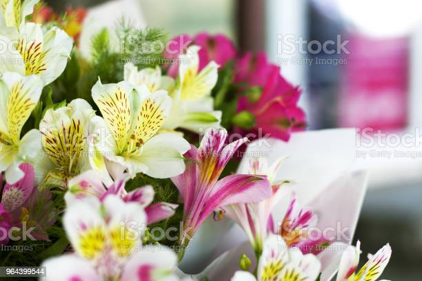 Foto de Flores Coloridas De Alstroemeria Um Grande Buquê De Alstroemerias Coloridas Na Loja De Flores São Vendidos Sob A Forma De Uma Caixa De Presente e mais fotos de stock de Alstromeria