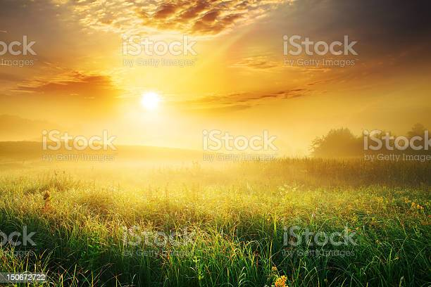 Colorful And Foggy Sunrise Over Grassy Meadow Landscape Stock Photo - Download Image Now
