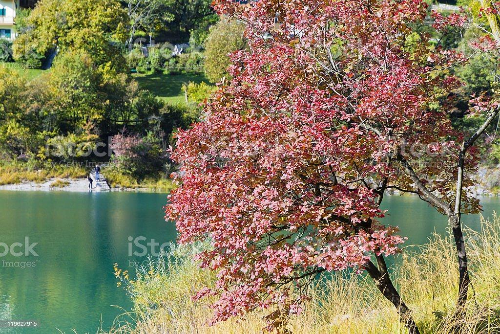 Colorful Autumn Around Lake Tenno, Italy royalty-free stock photo