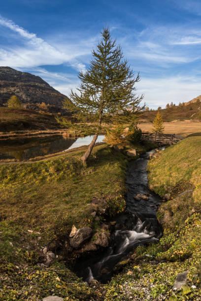 Bunter Herbst in den Schweizer Alpen auf dem Simplonpass – Foto
