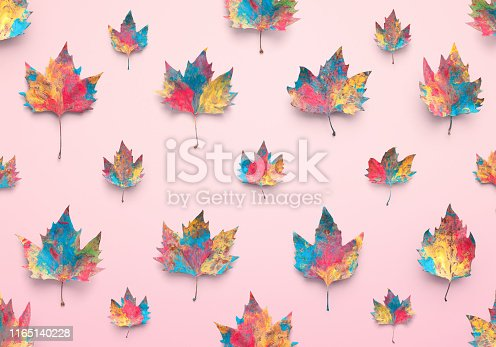 Colorful maple leaves on pink background.