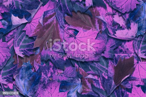 Autumn background in neon colors.