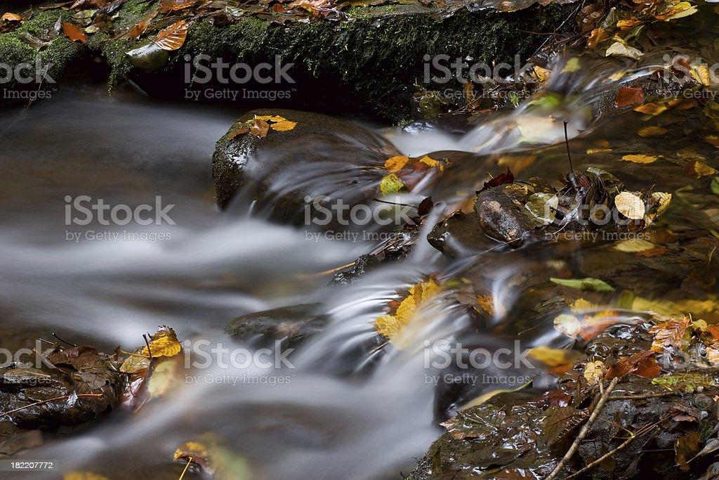 Colorful autumn creek scene. royalty-free stock photo