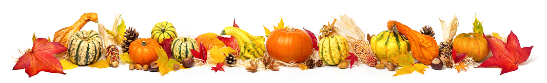 istock Colorful autumn decoration, extra wide format 1176582095