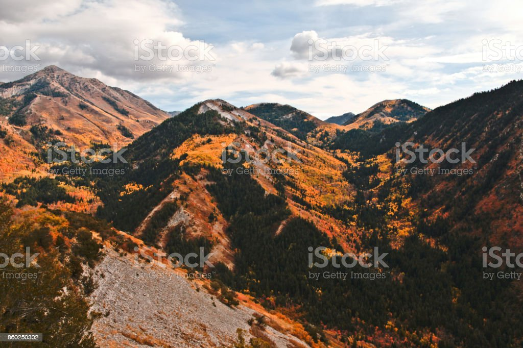A colorful autumn display stock photo