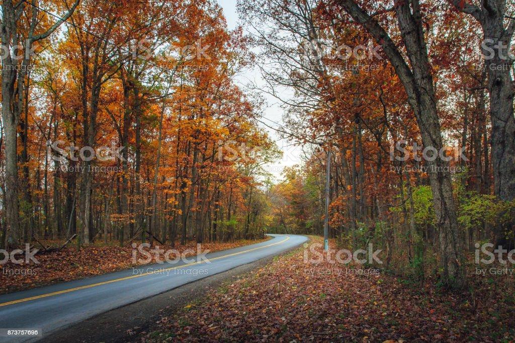 Colorful Autumn Drive stock photo