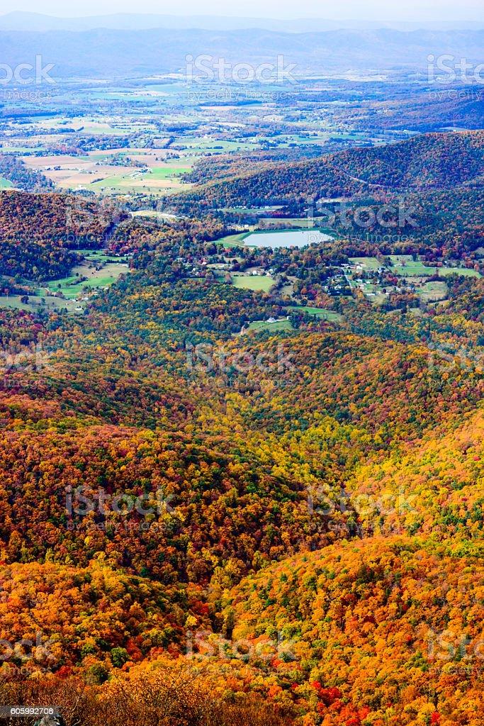 Colorful autumn forest, Shenandoah National Park, Virginia stock photo