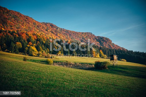 istock Colorful autumn forest, wallpaper photo 1051702550
