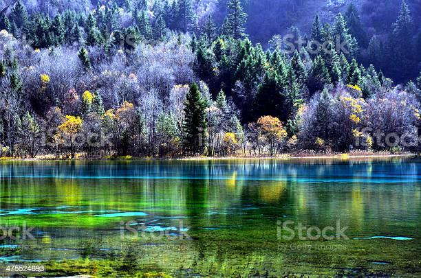 Photo of Colorful autumn Jiuzhaigou