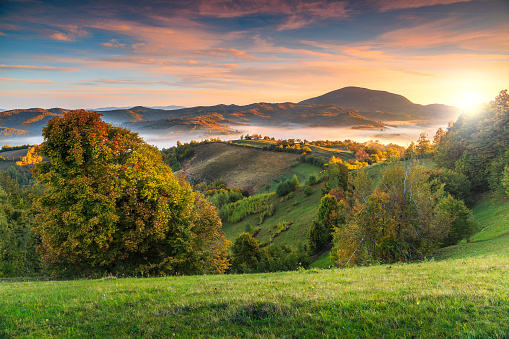 Colorful autumn landscape with misty valley,Holbav,Transylvania,Romania,Europe