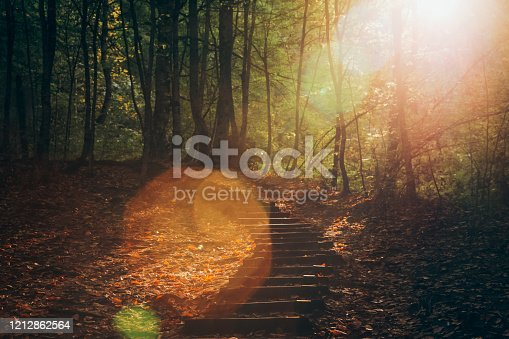 istock Colorful autumn landscape with sun beam. 1212862564