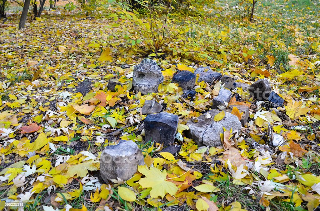 Colorful autumn leaves and stones in the park. Background foto royalty-free