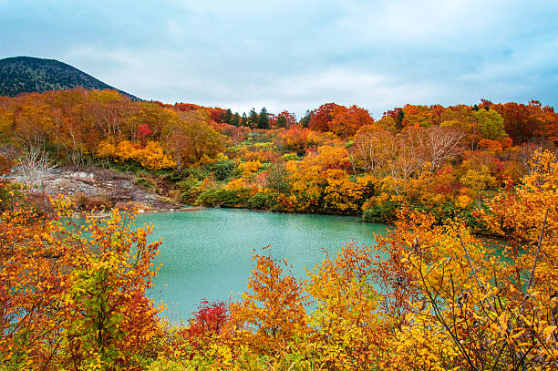 Colorful Autumn leaves in Aomori, Jigokunuma Pond – Foto