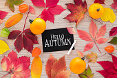 Colorful autumn leaves on rustic wooden background with text