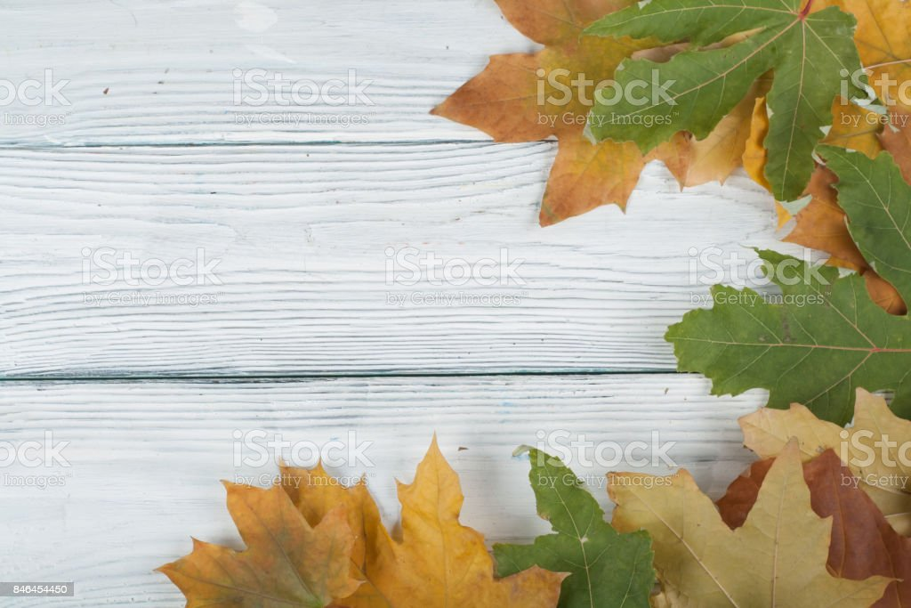 Colorful autumn leaves on wooden background, Copy space for text. Top view stock photo