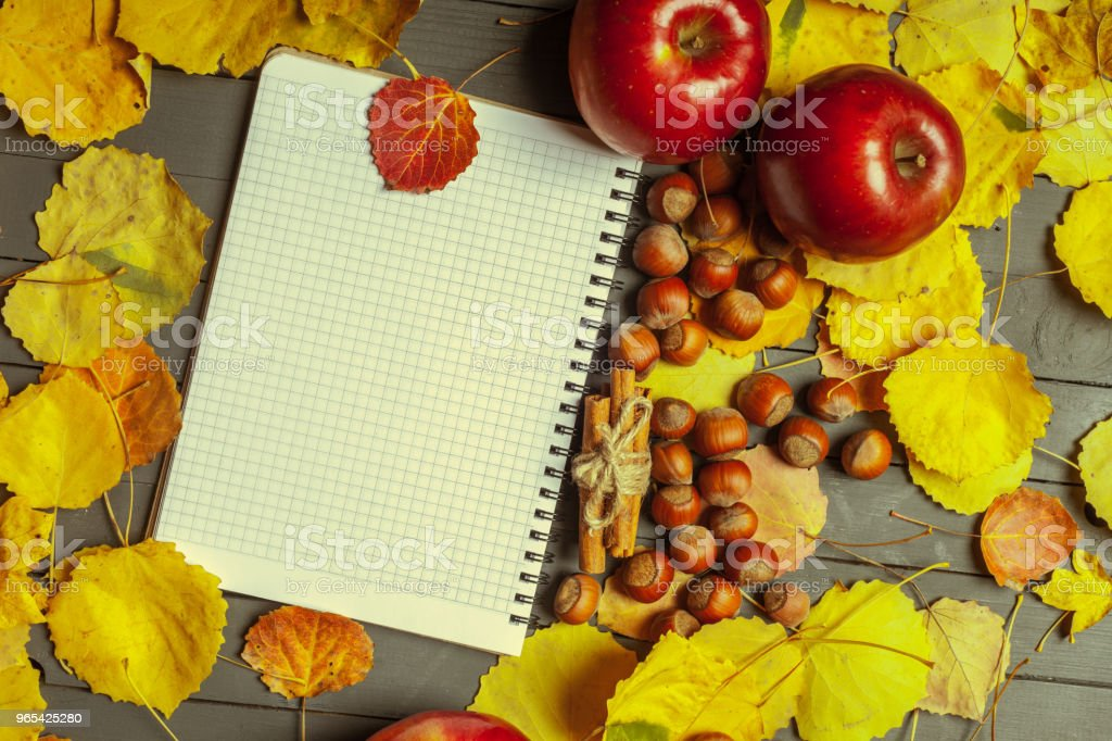 Colorful autumn leaves over wood background with copy space zbiór zdjęć royalty-free