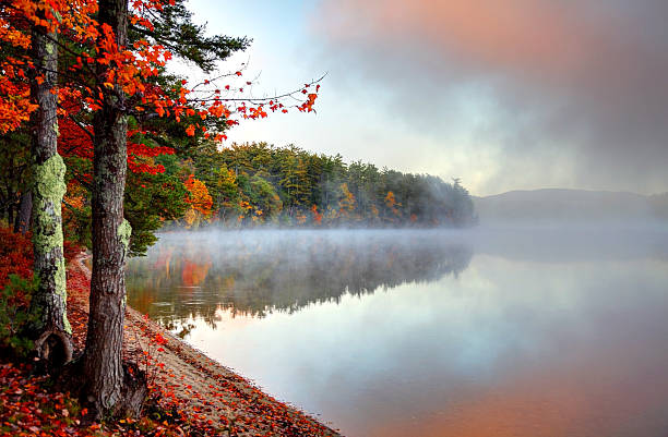 Colorful Autumn Mist in New Hampshire Autumn fog reflecting on a lake in the White Mountains National Forest in New Hampshire white mountain national forest stock pictures, royalty-free photos & images