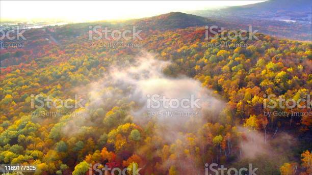 Photo of Colorful Autumn mountainside at sunrise, fiery Fall colors