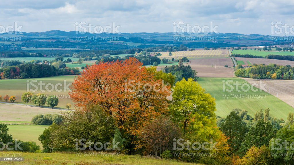 Colorful autumn panorama in sunlight stock photo