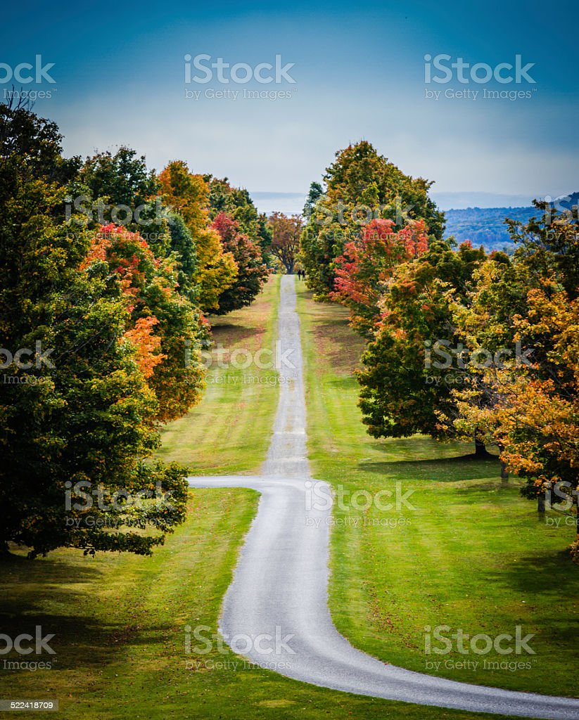 Colorful Autumn Path stock photo