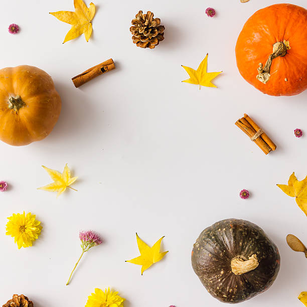 colorful autumn pattern made of pumpkins, leaves and flowers. - pumpkin stock photos and pictures