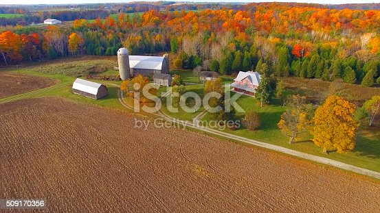 istock Colorful Autumn rural forest and farm landscape. 509170356