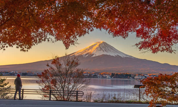 Colorful Autumn Season and Mountain Fuji Colorful Autumn Season and Mountain Fuji lake kawaguchi stock pictures, royalty-free photos & images