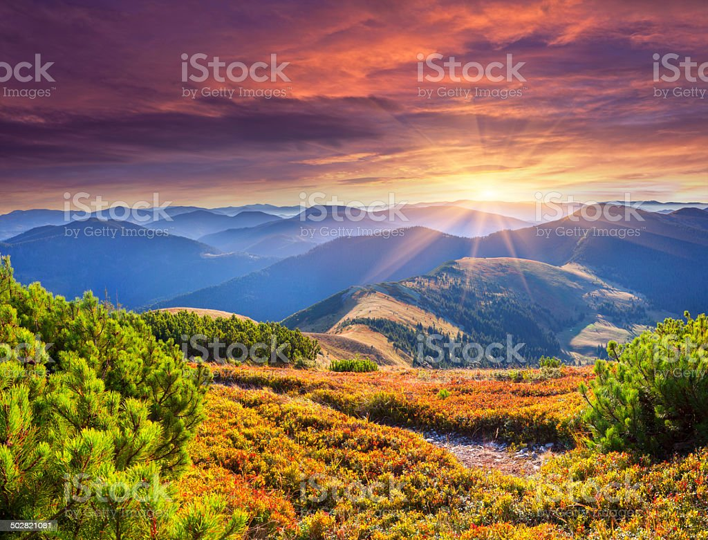 Colorful autumn sunrise in the Carpathian mountains. stock photo