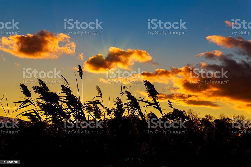 Colorida Puesta De Sol Con Los Rayos De Sol Otoño Para