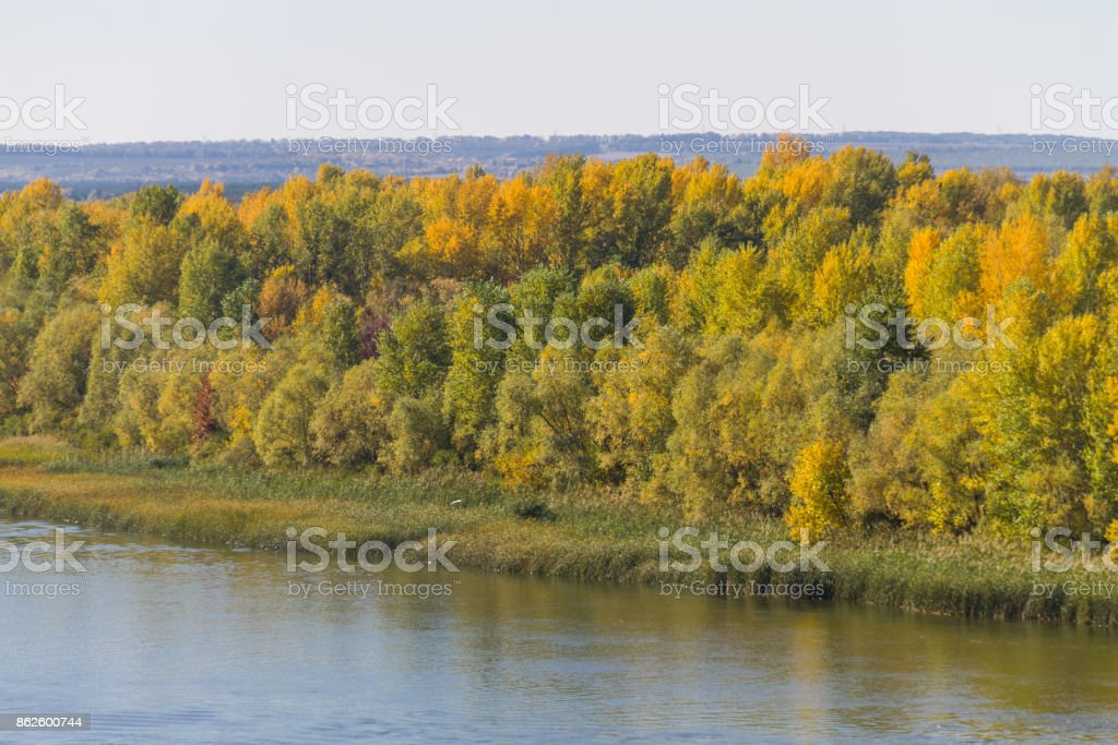Colorful autumn trees on the riverfront. stock photo
