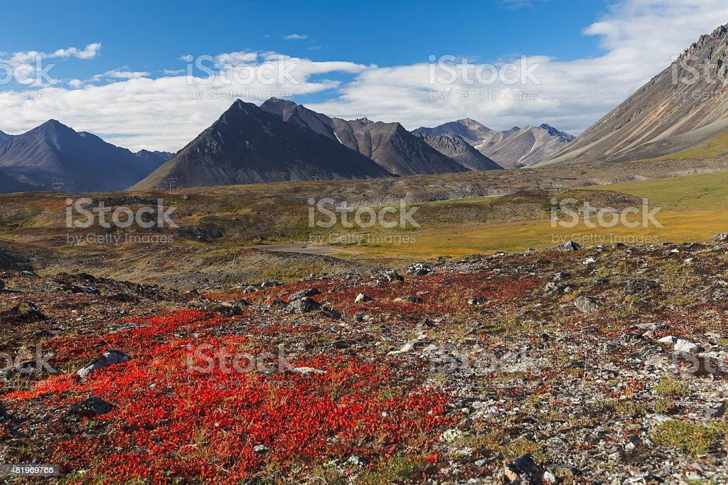 Colorful autumn tundra and river Chukotka, Russia stock photo