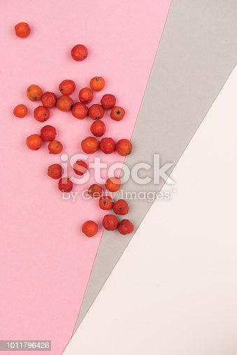 istock colorful background 1011796426