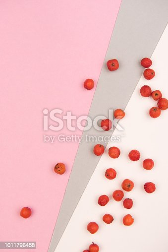 istock colorful background 1011796458