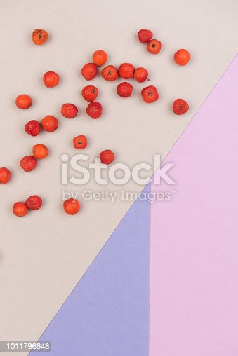 istock colorful background 1011796648