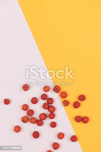 istock colorful background 1011798868