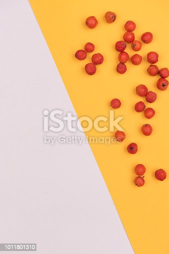 istock colorful background 1011801310