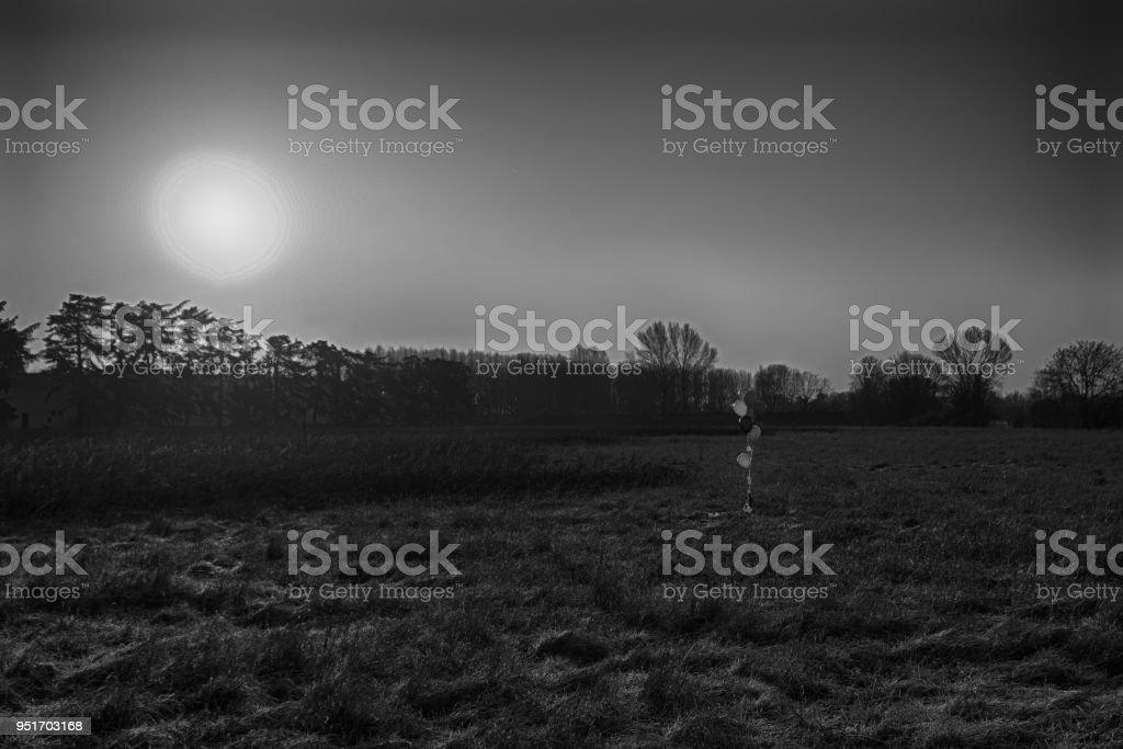 colorful balloon in the autumn field. Funny mood, prepare for ce stock photo
