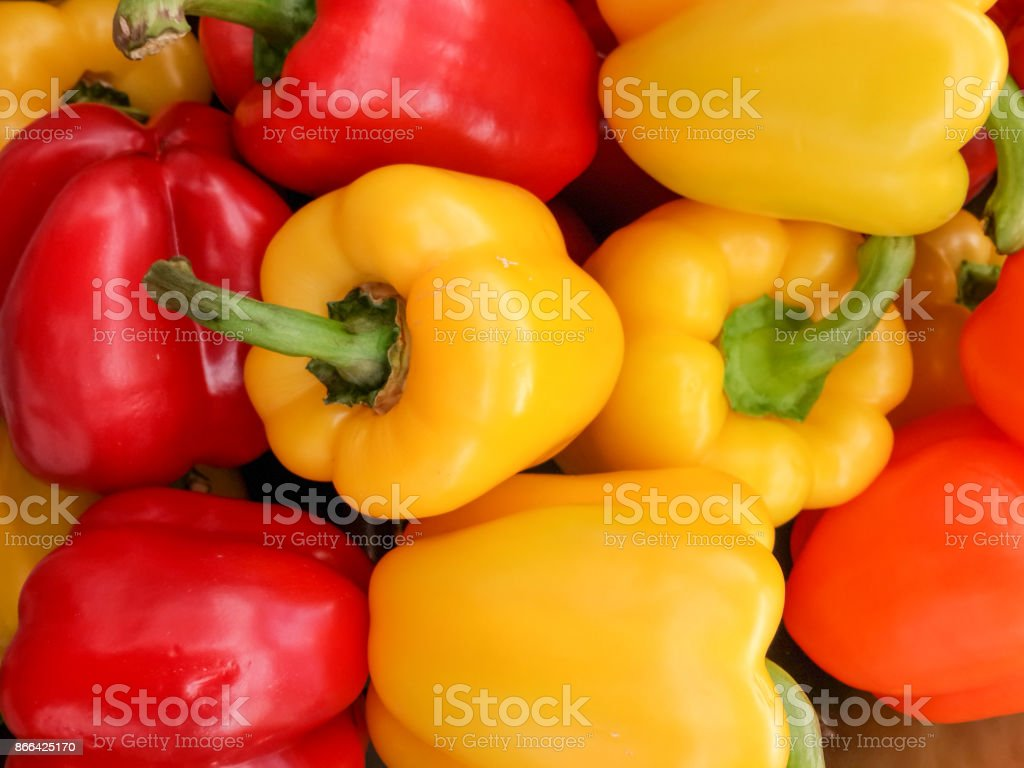 Colorful bell pepper or sweet pepper stock photo