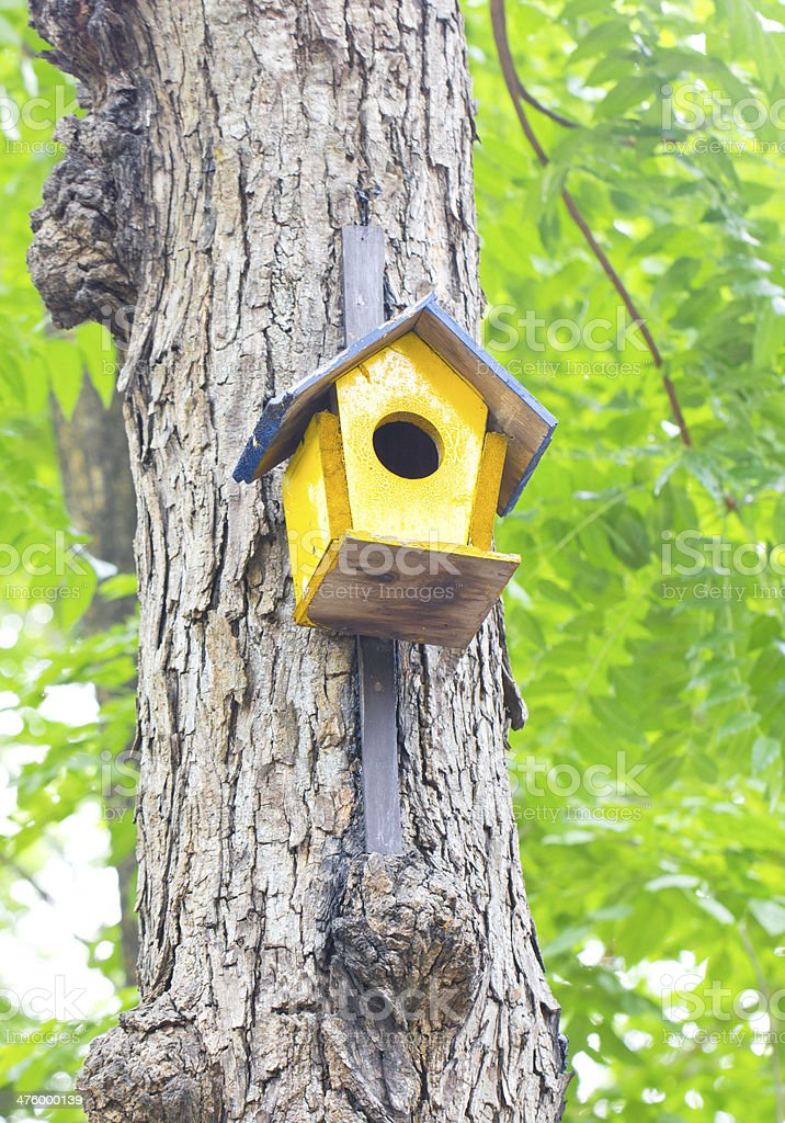Colorful birdhouse made of wood up in a tree. royalty-free stock photo
