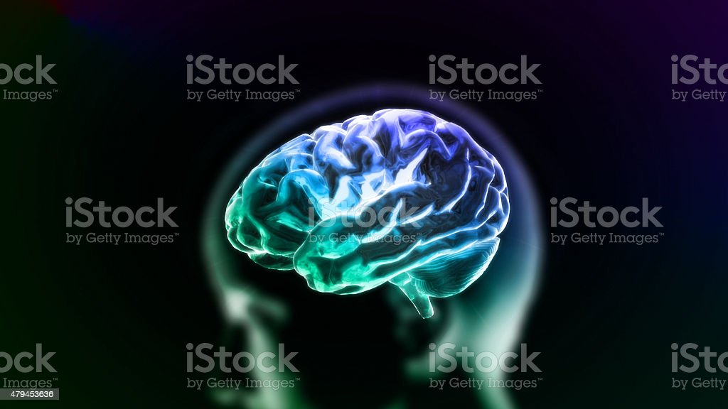 colorful blue brain in head stock photo
