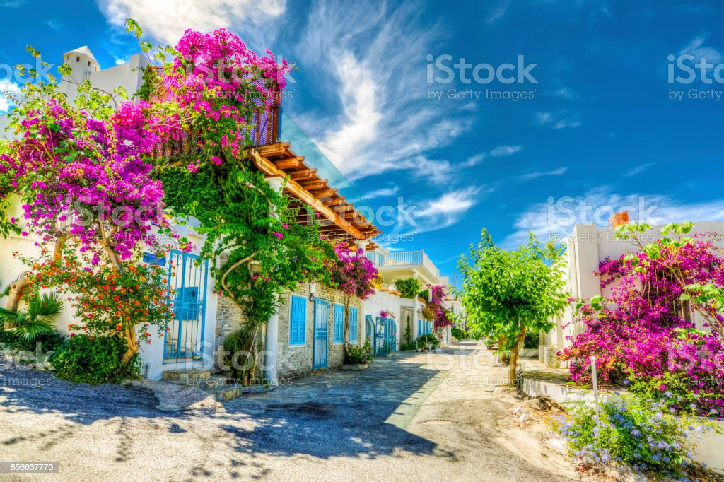 Colorful Bodrum Houses foto stock royalty-free