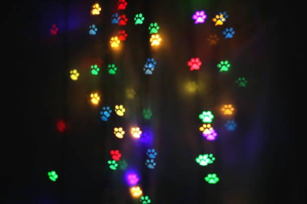 Colorful bokeh in the shape of animal tracks picture id1127059417?b=1&k=6&m=1127059417&s=612x612&w=0&h=btyhsaae9vgja2c0muu2p77v1qdgry1baa db8qv ke=