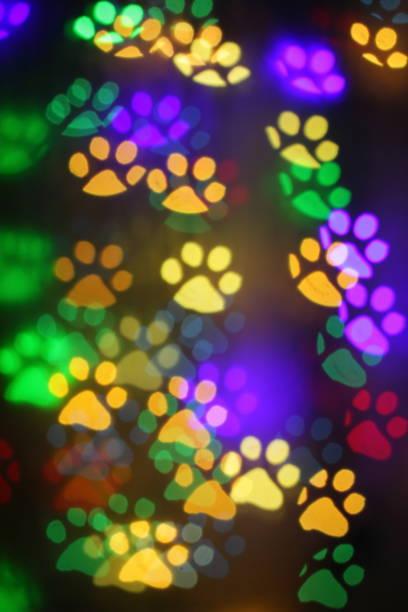 Colorful bokeh in the shape of animal tracks picture id1127060380?b=1&k=6&m=1127060380&s=612x612&w=0&h=ahxzcbtbxj6rb4mglz9cqrqtj9gap8ntyz2 h94br3k=