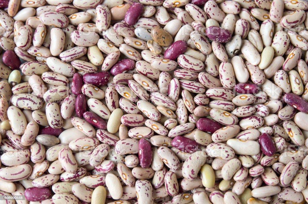 Colorful Borlotti beans background pattern stock photo