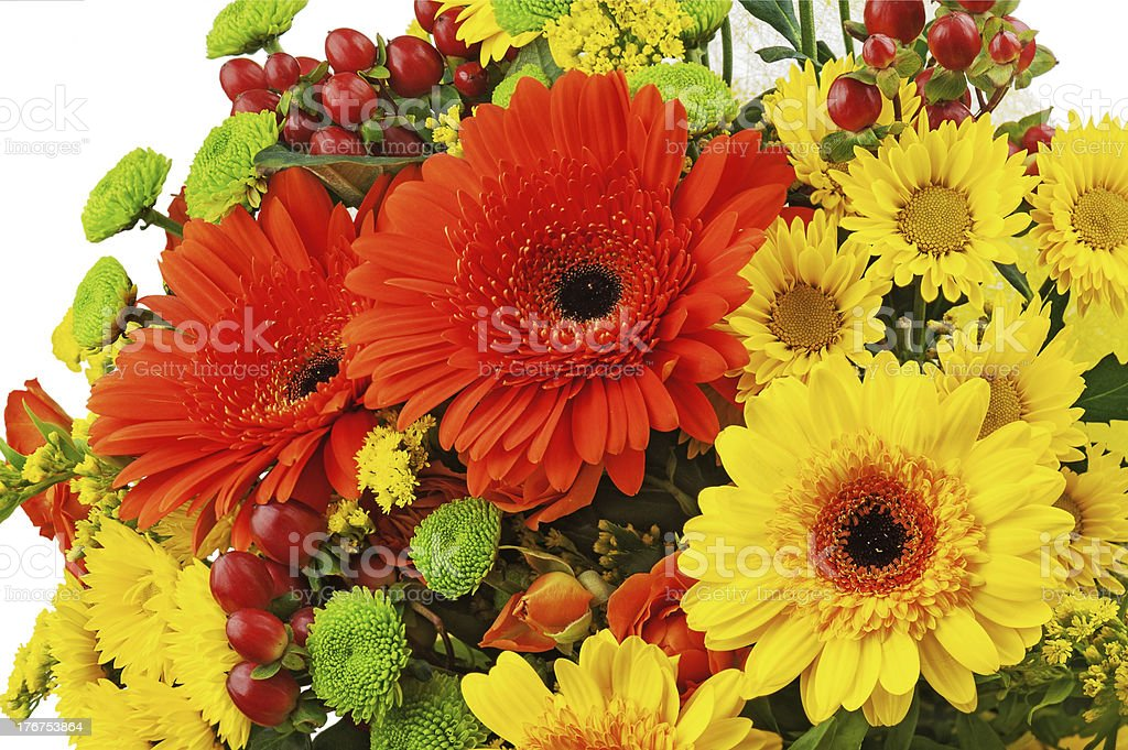Colorful bouquet from gerbera flowers isolated on white backgrou royalty-free stock photo