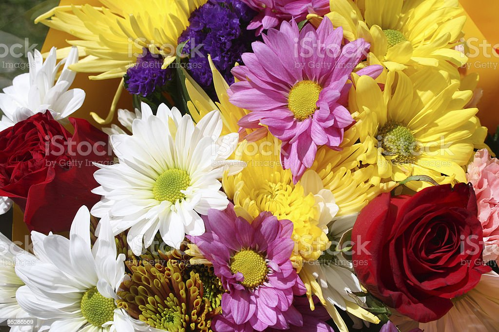 Colorful Bouquet of Flowers royalty-free stock photo