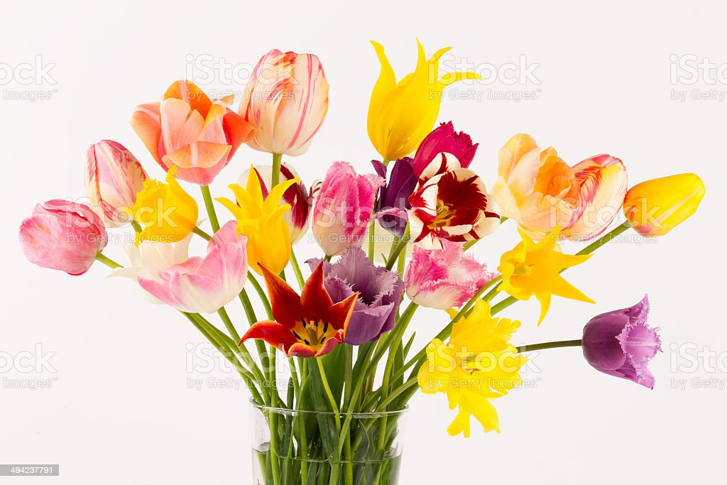colorful bouquet of tulips of different forms royalty-free stock photo
