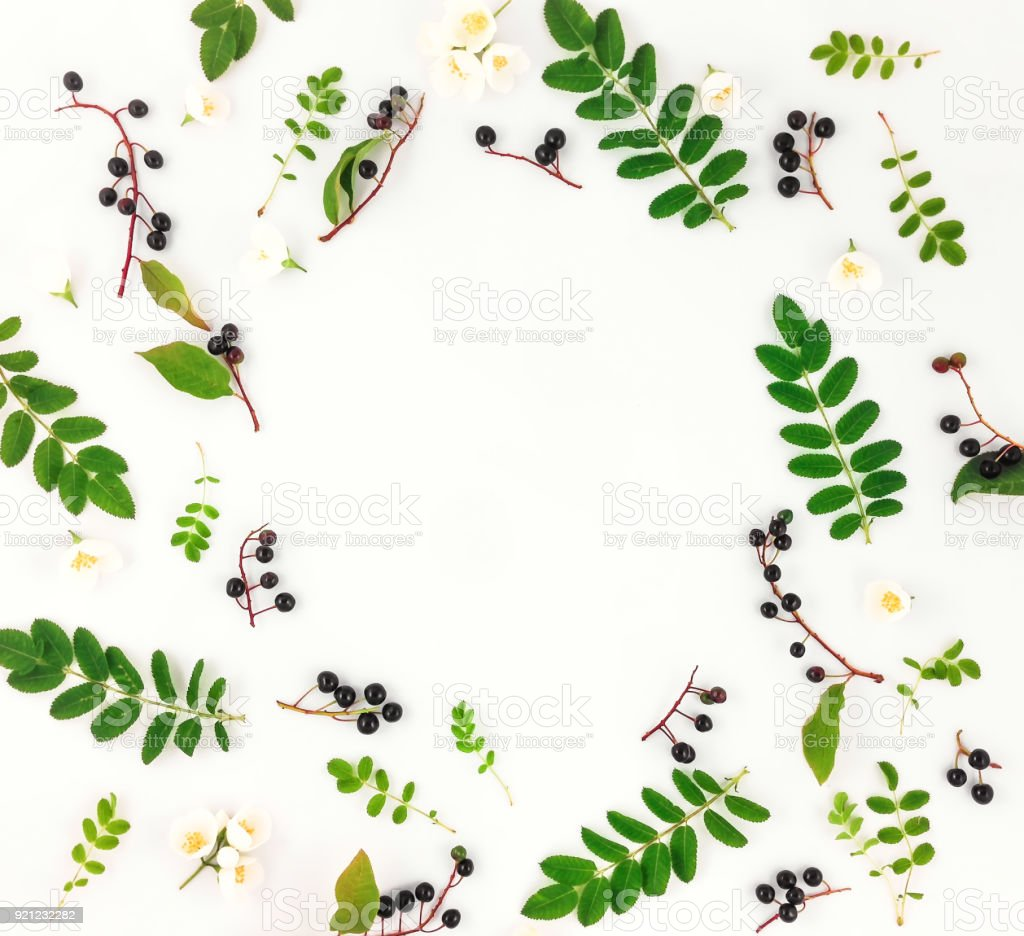 Colorful bright round frame of leaves, berries and flowers on white...
