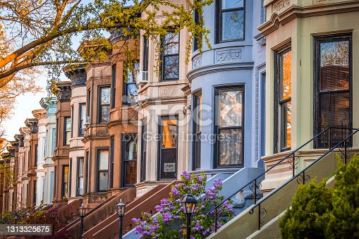 istock Colorful Brooklyn Brownstones 1313325675