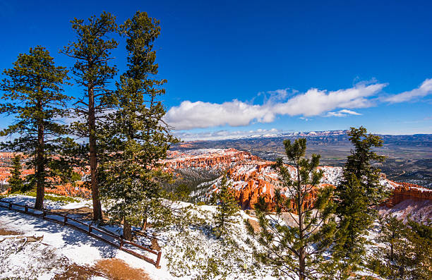 Colorful Bryce canyon national park, Utah stock photo